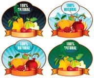 Bearing fruit Stock Image
