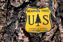 Bearing Tree Sign Stock Photo