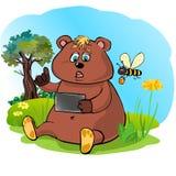 BearPlay Стоковая Фотография RF
