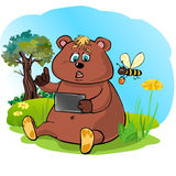 BearPlay royalty free stock photography