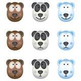 The Bears. Bears Royalty Free Stock Photos