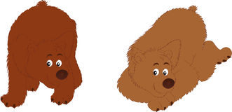 Bears. Vectors illustration 2D shows two bears Royalty Free Stock Photo