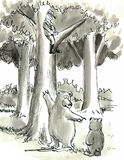 Bears. Have chased the hunter up the tree Royalty Free Stock Images