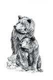Bears. Pen and ink hand drawn illustration of two bears on a white background. Illustration by marilyna Royalty Free Stock Photography