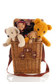 Bears in basket isolated over white background Royalty Free Stock Image