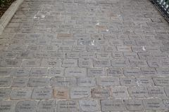 Engraved paving stones Stock Images