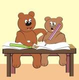 Bears - in class Stock Photos