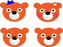 Bears' face Stock Images