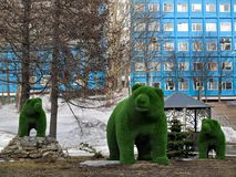 Bears figures an element of landscape design in the central square of Petropavlovsk-Kamchatsky. Landscaping in the form of bears in the central square of stock images