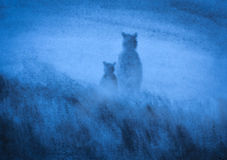 Bears in the fog Royalty Free Stock Images