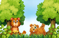 Bears and forest Royalty Free Stock Image