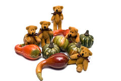 Bears and Gourds Royalty Free Stock Photo