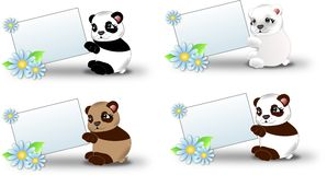 Bears with label. Set of four coloured bears with white label decorated with light blue flowers Royalty Free Stock Image