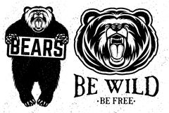 Bears logo Royalty Free Stock Images