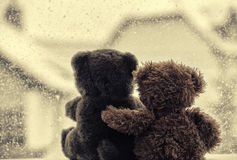 Bears in love's embrace, sitting in front of a window Royalty Free Stock Photo