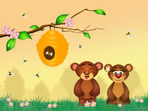 Bears play with bees Stock Photo