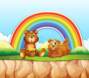 Bears and rainbow Stock Images