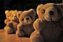Bears in a row. Four plush bears sitting in a row Royalty Free Stock Photo