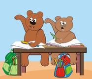Bears - at school Stock Photos