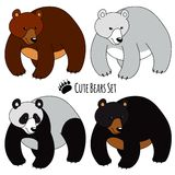 Bears Set. Set of Four Bears, isolated. Brown, White, Panda and Grizzly Stock Photos