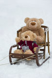 Bears in the sled Royalty Free Stock Photography
