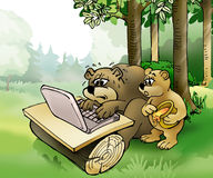 Bears surfing. Brown bear and bear cub surfing on the laptop Royalty Free Stock Photos