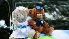 Bears on a Wedding Car. Two Bears on a Wedding Car stock video footage
