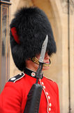 Bearskin and bayonet. Royalty Free Stock Photo