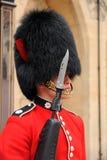 Bearskin en bajonet. Royalty-vrije Stock Foto