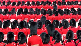 Bearskins on Parade Royalty Free Stock Images