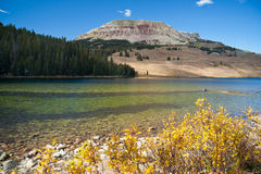 beartooth湖蒙大拿美国 库存照片