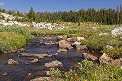 Beartooth Mountains alpine fishing stream Stock Images