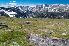 Beartooth Pass, Wyoming stock photo