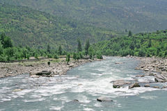 beas森林新鲜的绿色喜马拉雅kullu河水 免版税库存照片