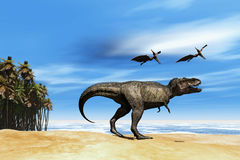 Beast. Two Pterodactyl flying dinosaurs greet Tyrannosaurus Rex near the ocean Royalty Free Stock Image