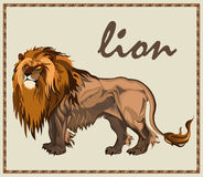 Beast Lion isolated Stock Photography