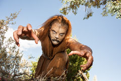 Beast reaching out to grab you. A human Lion creature reaches out menacingly to grab you. Looking into the camera. Character created by renowned special fx make royalty free stock images