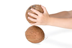 Beat the coconut against each other Royalty Free Stock Images