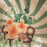 Beat flower Stock Photography