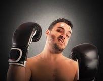 Beaten boxer Stock Photography