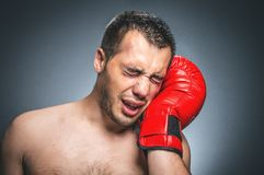 Beaten boxer crying Royalty Free Stock Images