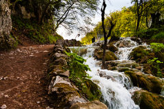 Beaten track near a forest waterfall in Plitvice Lakes National Stock Images