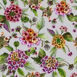 Beatiful bright lantana flowers with green leaves on light grey background. Seamless floral pattern. Watercolor painting. Hand drawn illustration. Can be used stock illustration