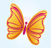 Beatiful butterfly Royalty Free Stock Photography