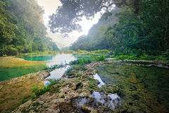 Beatiful Cascades National Park in Guatemala Semuc Champey at su Stock Photos
