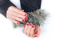 Beatiful Christmas manicure. With sparkles, that is demonstrated on fir branch with snow stock photography