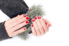 Beatiful Christmas manicure. With sparkles, that is demonstrated on fir branch with snow stock photos