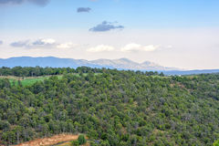Beatiful daylight view to mountains and green forest. In Ruidoso, New Mexico, United states of America Stock Photography