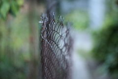 Beatiful fence in bokeh blur. Fence with old vintage bokeh blur for background royalty free stock photo