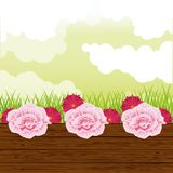 Beatiful garden with flowers scenery. Beatiful garden with flowers sunny day scenery vector illustration graphic design royalty free illustration